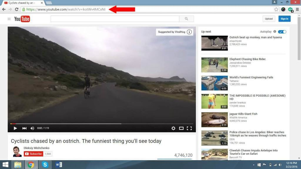 How to Embed Youtube Videos in WordPress Posts